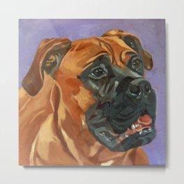 Finnly the Bull Mastiff Dog Portrait Metal Print