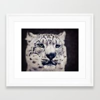 snow leopard Framed Art Prints featuring Snow Leopard by Angela Dölling, AD DESIGN Photo + Photo