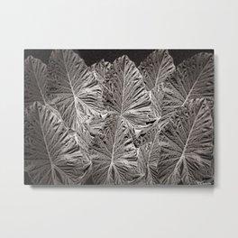 IT'S BLACK, IT'S WHITE Metal Print