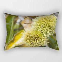 Chestnuts Rectangular Pillow