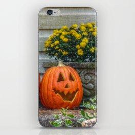Autumn Scene iPhone Skin