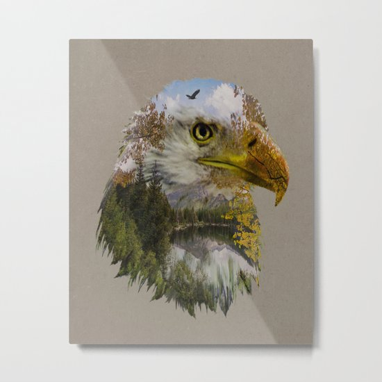 The American Bald Eagle Metal Print