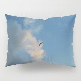 Evening flight Pillow Sham