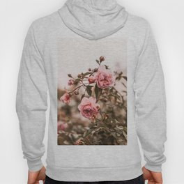 Rose Photography Pastel Flowers Hoody