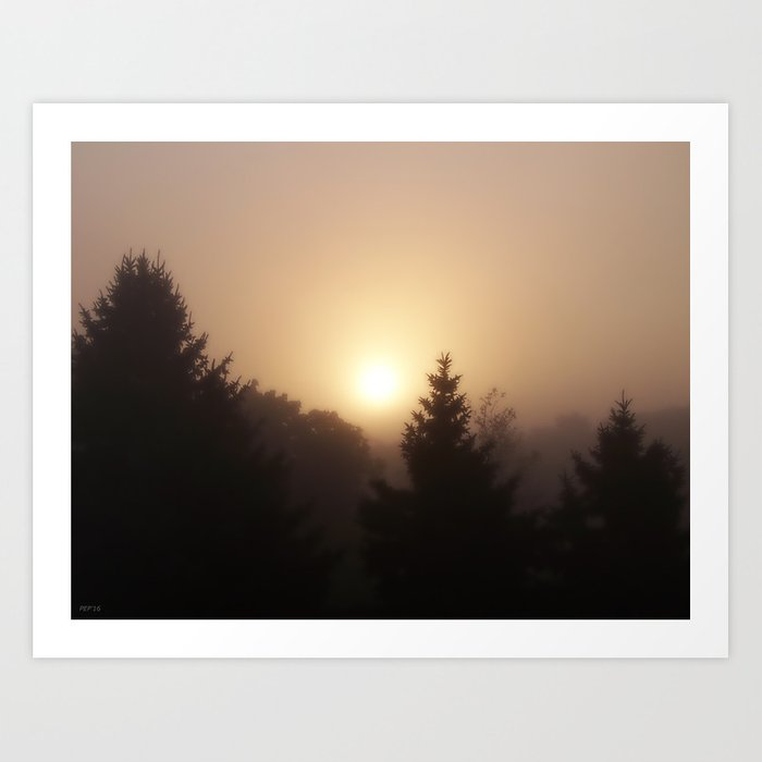 Sunrise Through Morning Fog Art Print