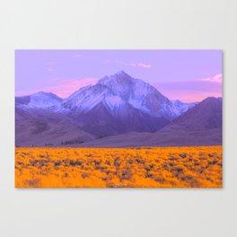 1960s Landscape XX Canvas Print