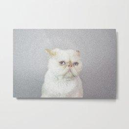 Lord Aries Cat  Metal Print