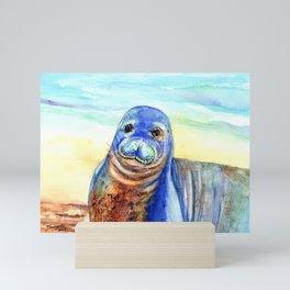 Hawaiian Monk Seal Mini Art Print