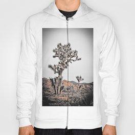 Joshua Tree #21 Hoody