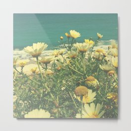 Cretan Daisies on the Mediterranean Sea Metal Print