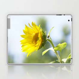 Ladybug and it's Sunflower Laptop & iPad Skin