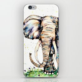 Magnificence iPhone Skin
