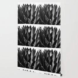 Agave Chic #7 #succulent #decor #art #society6 Wallpaper