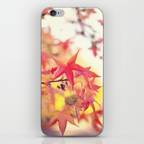 Forever Fall  iPhone & iPod Skin