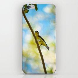 Yellow Bird - III iPhone Skin