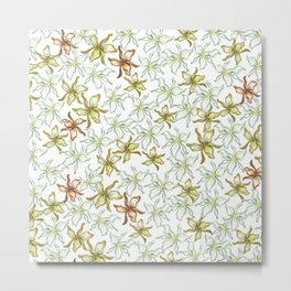 christmas flower in pale green and golden white Metal Print