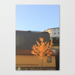 Yellow tree in the city Canvas Print