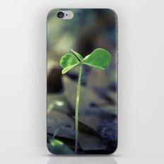 Clover iPhone & iPod Skin
