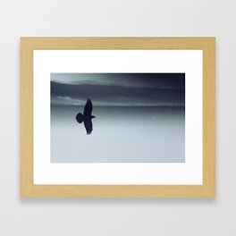 Crow And His Shadow Framed Art Print