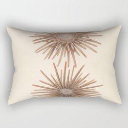 Naturalist Sea Urchins Rectangular Pillow