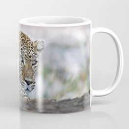 Leopard in a tree, Africa wildlife Coffee Mug