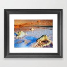 Sea shell Framed Art Print