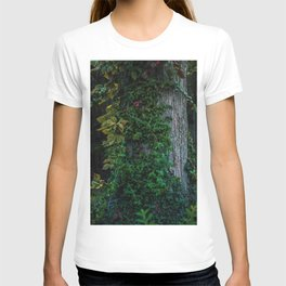 Ivy upon the Tree (Color) T-shirt