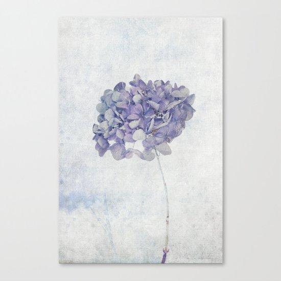 Blue Vintage Hydrangea Canvas Print