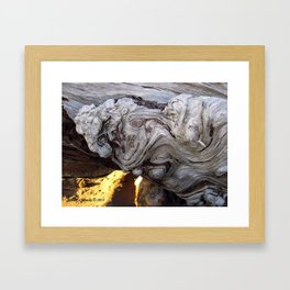 Driftwood Abstract Framed Art Print