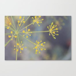 Some Plant Canvas Print