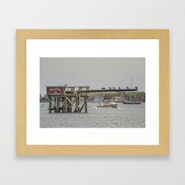 Cormorants on the Greasy Pole Framed Art Print