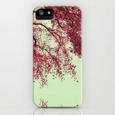 Autumn Blood iPhone (5, 5s) Slim Case