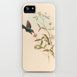 Jericho Sun bird2 iPhone Case