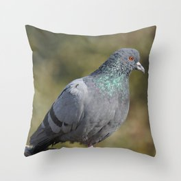 The great Indian pigeon Throw Pillow