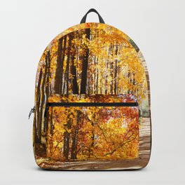 Michigan, Golden Road Backpack