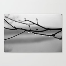 A Whisper No. 02 Canvas Print