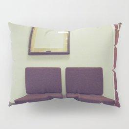053//365 Pillow Sham