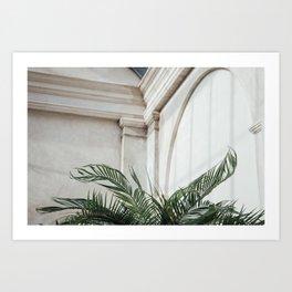 Palm in Orangery Art Print