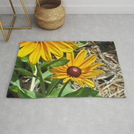 Black-eyed Susans and a Busy Bee Rug