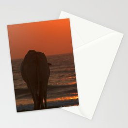 Cow Watching the Sunset Arambol Stationery Cards