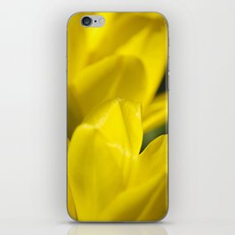 Yellow Flower Abstract iPhone Skin