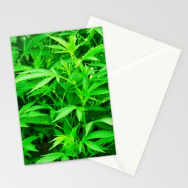 Cannabis plant Stationery Cards