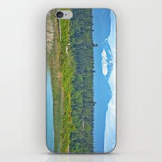 bc mountains iPhone & iPod Skin