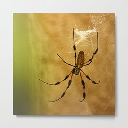 Banana Spider Metal Print