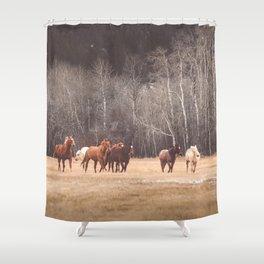 Hidden Spirits Shower Curtain