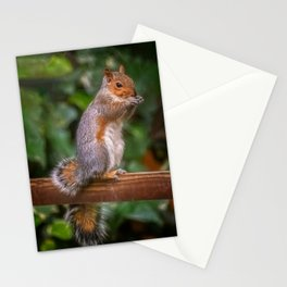Cyril the Squirrel Stationery Cards