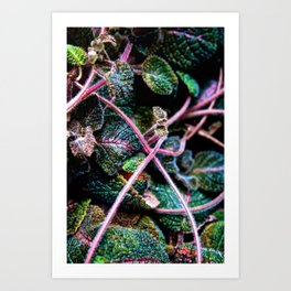 Chained into life Art Print