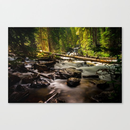 Nature's Creek  Canvas Print