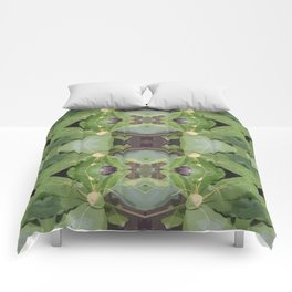 Almond Tree Pattern Comforters