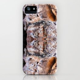 Fountain Head iPhone Case